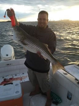 40 inch plus Boston striped bass