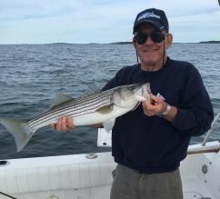 Boston Harbor early season striper