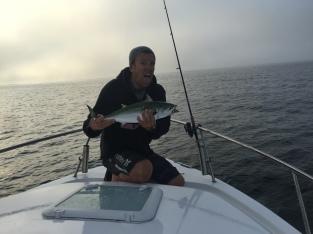 cape cod light tackle false albacore