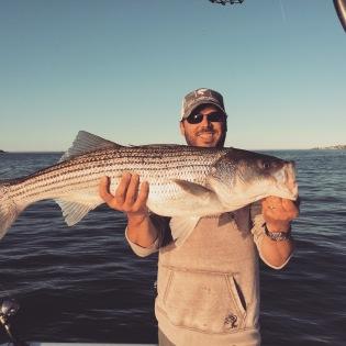 Boston Harbor striped bass on light tackle