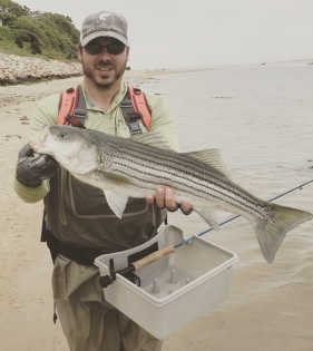 Cape Cod father's day striped bass on the fly