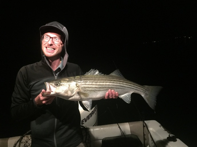 Nighttime stripers on the fly