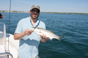 First of many stripers on the fly of the day