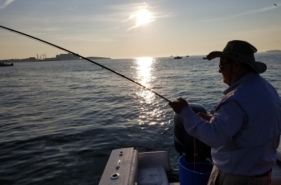 Boston Harbor Schoolie on the Fly