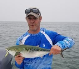 Cape Cod Albie on light tackle
